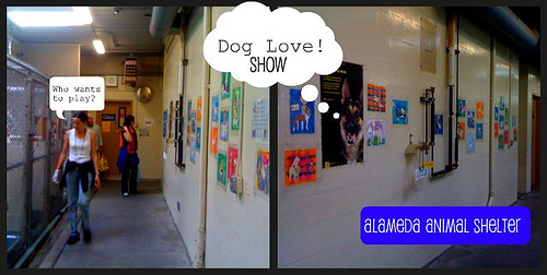 ARt Yowza AFter-School Class: Dog Love Show at the Alameda Animal Shelter