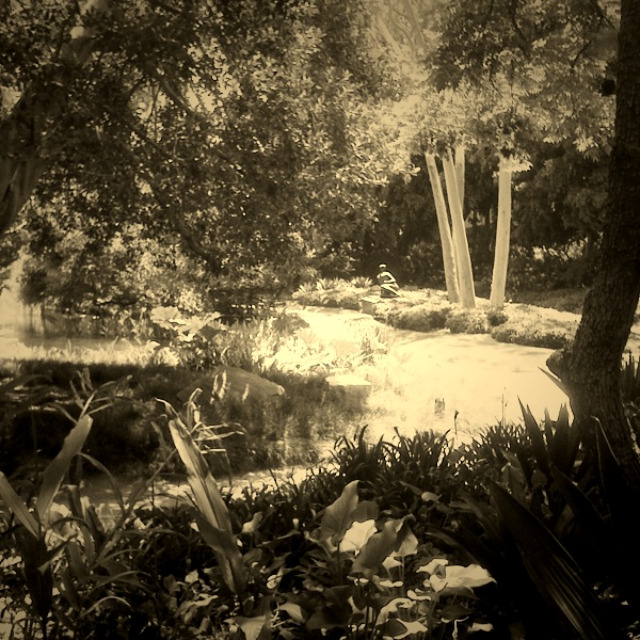 norton simon museum, dream sequence, sepia, lost space,